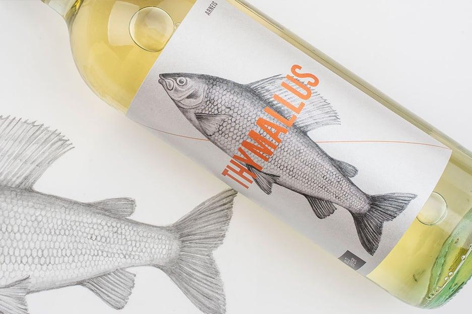 Jam Area - Etichetta illustrata per wine packaging